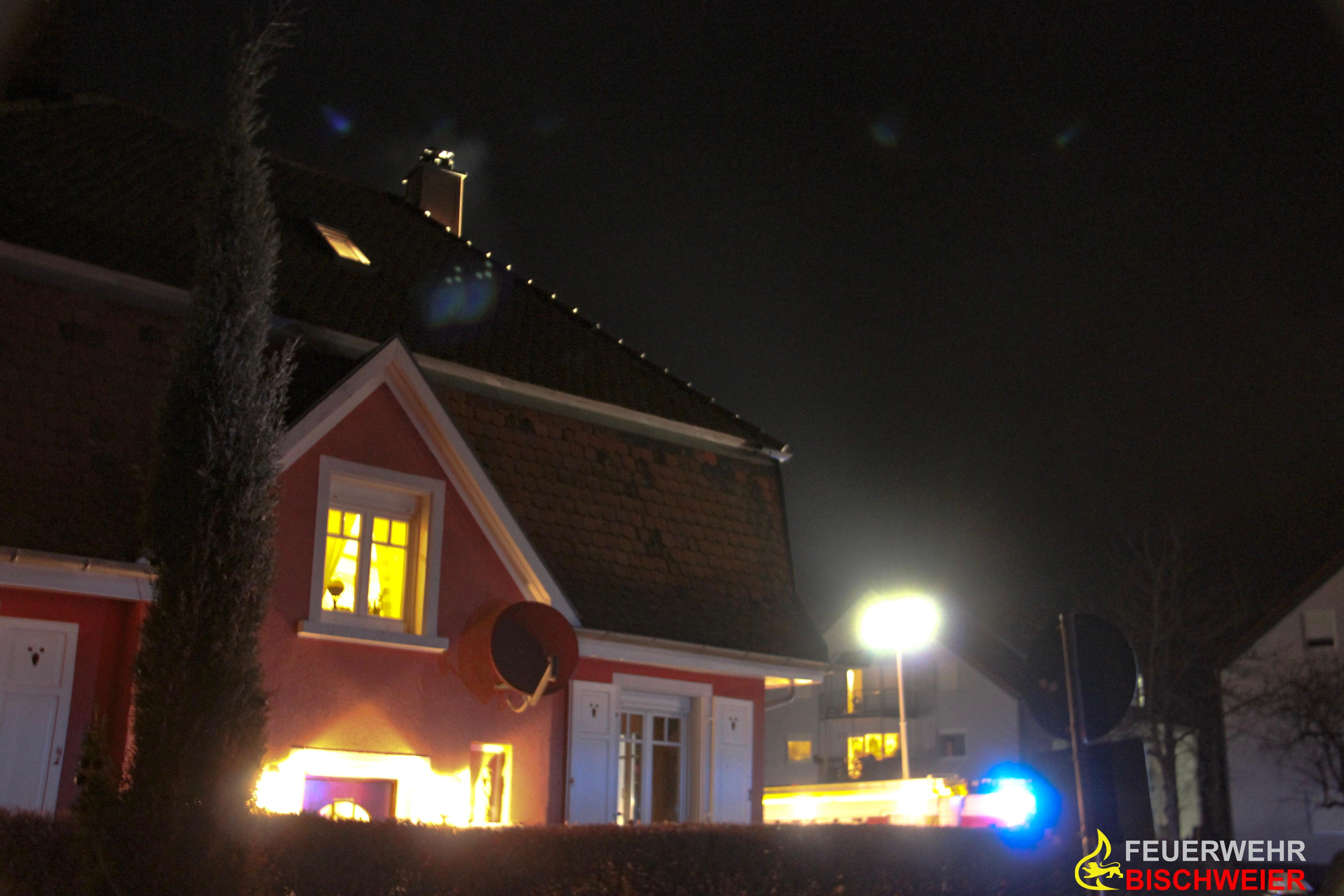 Einsatz 201902 © Feuerwehr Bischweier